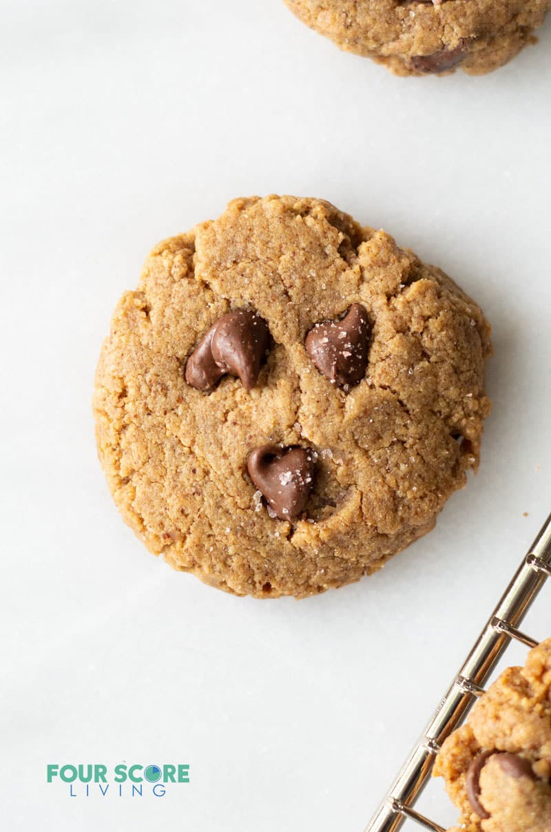 a brown chocolate chip keto almond butter cookie on a white background